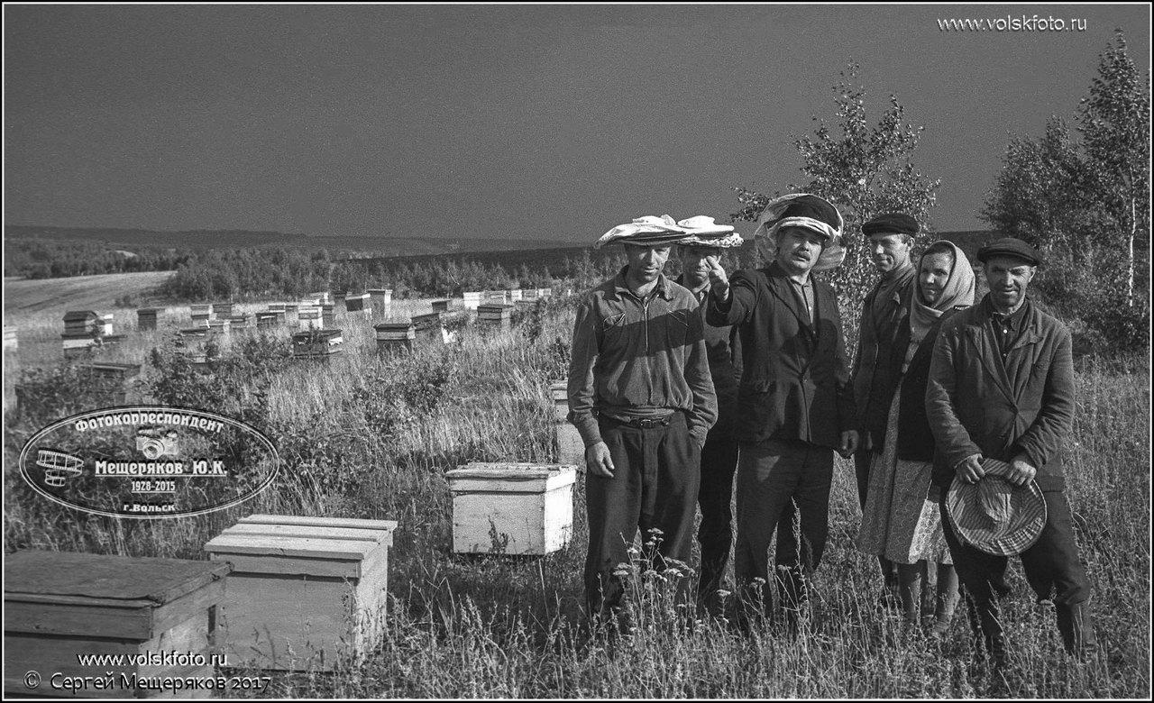 Пчеловоды.Вольский район.